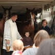 blessing-of-animals-2011-012-2